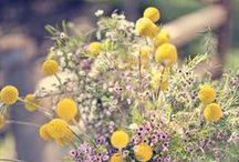 We <3 Flora & Fauna / Floral inspiration