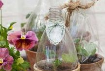 Gardening Decorative