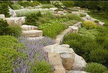 Terracing / Garden Levels