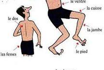 Aprender Francês