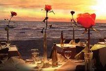 AMI Dining / by Anna Maria Island Resorts