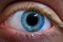 Retinal Disease / A look at the diseases affecting the eye and today's cutting edge care
