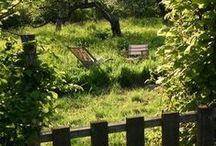 Garden-Jardín