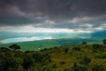 Travel   Tanzania / by Kelly A