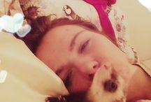 my lovely ferrets / ferret love!  x