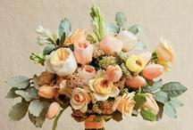 FLORA// / bring me lots of flowers / by H. Kambo