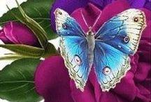 《~Peaceful butterflies~》