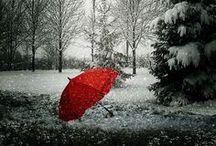 《 ~Red & Grey~ 》