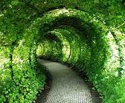 《 ~Shades of Green~ 》