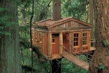 Treehouse / by SALA Architects
