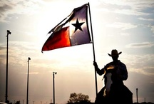 Don't Mess with Texas✯ / by Marilyn Clark