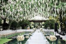 Twilight Themed Weddings / www.katherinecourtney.com
