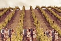 Vineyard Weddings / www.katherinecourtney.com