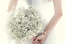 Babys Breath Weddings / www.katherinecourtney.com