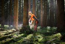 Forstwirtschaft - Waldarbeit / Das Holzgeschäft ist und bleibt das Kerngeschäft der Bayerischen Staatsforsten. Gut 90 % der Einnahmen erzielen wir mit dem Verkauf des ökologischen und nachwachsenden Rohstoffs Holz. Auf den rund 720.000 Hektar Wald, die wir bewirtschaften, wachsen jährlich mehr als sechs Millionen Festmeter Holz nach, etwa fünf Millionen Festmeter können wir nachhaltig nutzen.
