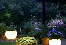 Clever garden ideas