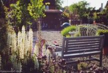Lovely things for outdoors / Georgeous garden features, pots, benches, water features etc. some of which we sell at the Plant Centre