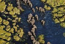 Botswana / Soul country...
