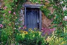 Garden inspiration / by Hazel Neal