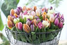 Easter <3 / Easter ideas, gifts, decoration, mood, beauty