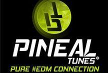 Pure EDM Connection / Track List EDM