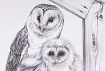 Owl drawings / owls drawn or painted / by heather hobson