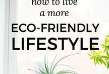 Eco-Friendly Lifestyle - Pins zu Nachhaltigkeit und Co. / Ideen, Gedanken, Tipps und Beiträge zum Thema nachhaltiger Lebensstil.