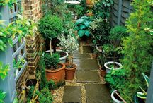 Garden Ideas / Clever, quirky and pretty garden ideas.