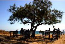 Hellas / Travel in Island