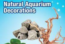 Natural Aquarium Decorations / Looking to make a natural looking aquarium? Get some ideas here! Natural decorations make the perfect addition to your aquarium!