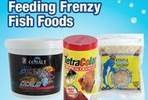 Feeding Frenzy Fish Foods! / Here's a great board with tons of different types of food for your aquarium fish! From Hikari to New Life Spectrum, we've got a huge selection