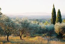 Inspiration Provence / idées et ambiances pour un jour d'exception aux parfums de Provence...