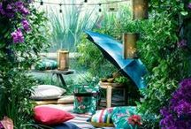 Dream garden / Ideas and inspiration for planning your dream outdoor space