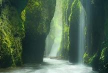 Beautiful Captures of  Mother Nature