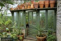 GARDEN > potting shed