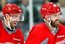 hockey / pictures of my favourite team, and of my favourite players from other teams / go wings!