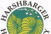 Harshbarger Hosta Society
