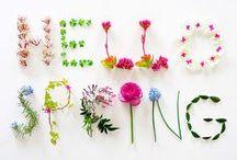 Wiosna ❀