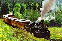 Choo...Choo...Trains / by Darla Rigdon
