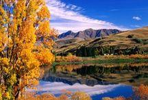 In Love With New Zealand / by Carlijn van der Steen