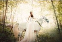 Angie Candell Photography