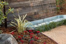 Garden & Pool & Outdoor