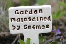 Room In The Garden For The Fairies To Dance / Fairy Garden Ideas / by Karen Kloibhofer