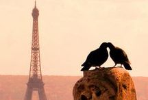 I Dream of The Eiffel Tower / by Pam Traves