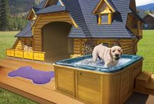 Pets houses