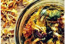 Herbalism & Gardening