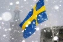 Sweden, I love my country <3 / by Carina Sandgren