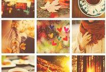 automne inspiration