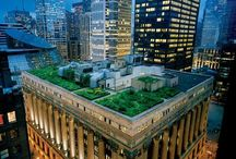 Green roofs and buildings