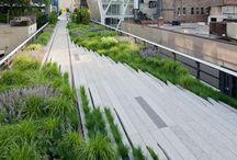 Rainwater architecture and design